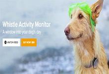 Whistle获1500万美金融资 可记录宠物活动信息和心率