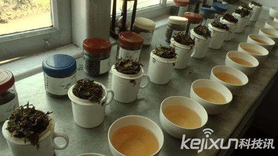 印度茶叶电商Teabox融资600万美金扩张海外市场
