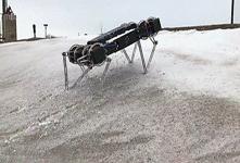 """全地形机器人冰上尬舞 险些""""失足"""""""