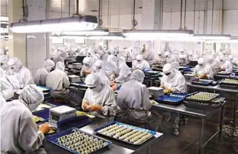 """加码发展智能制造""""无人水饺工厂""""曝光,再不努力真该失业了"""
