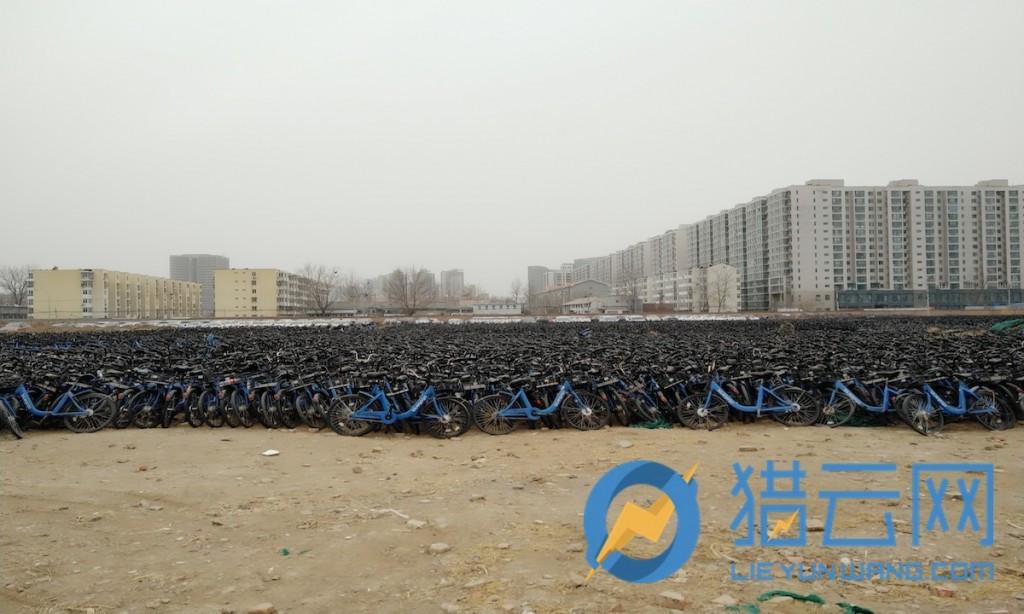 街头消失的小蓝单车去了哪?北五环附近停车场近6万辆等待着重回市场