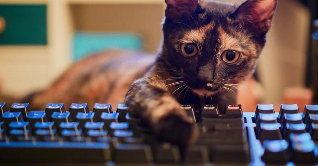 鲜为人知 电脑键盘上F1-F12快捷键的作用大全