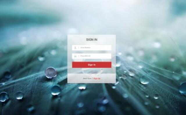 HTML 使用表单标签实现注册页面的实例代码