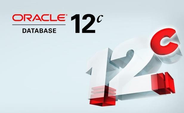 Oracle数据库多条sql执行语句出现错误时的控制方式